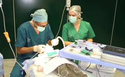 Articulațiile doare după anestezie