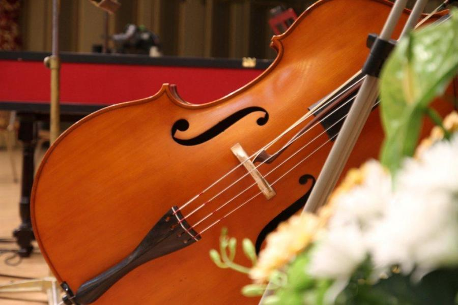 Vioara%20Stradivarius%20Elder Sustinem performanta si educatia